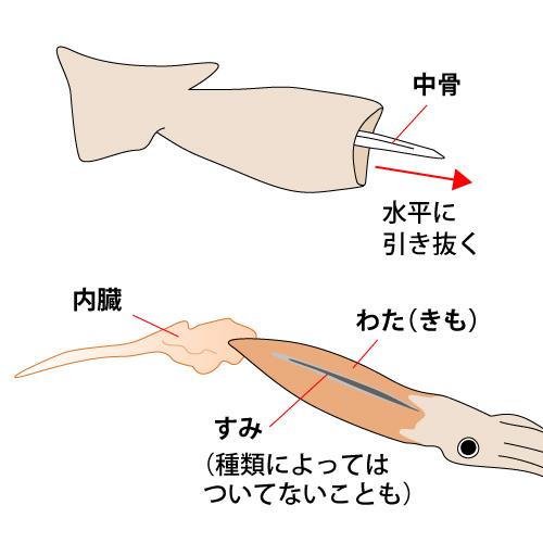 胴の中に手を入れて中骨や残っているワタを掻き出し水洗いする。うまくいけばまるごとすぽっと取れますよ。