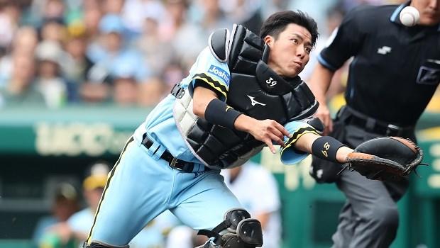 長坂拳弥 阪神タイガース 捕手