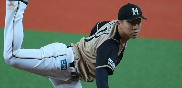 生田目翼 北海道日本ハムファイターズ 投手