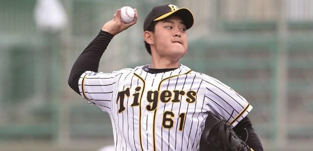 望月惇志 阪神タイガース 投手
